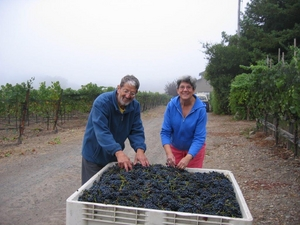 Emilio & Marina harvesting Grapes at Marina's Vineyard